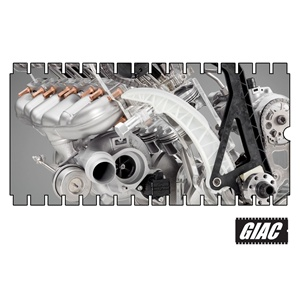 GIAC - BMW 135/335/535 Performance Software